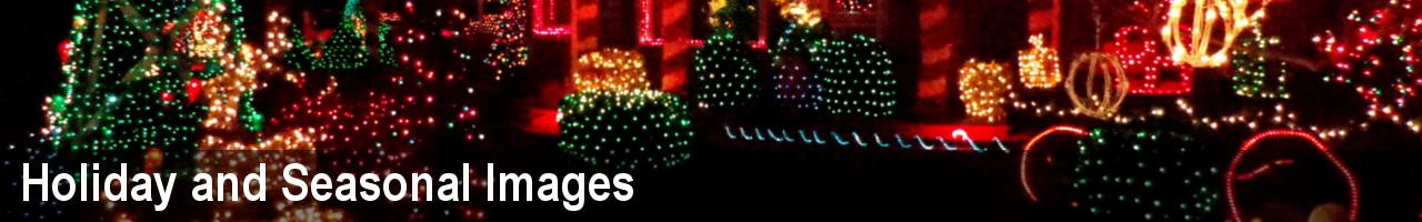 Christmas and Holiday Photos