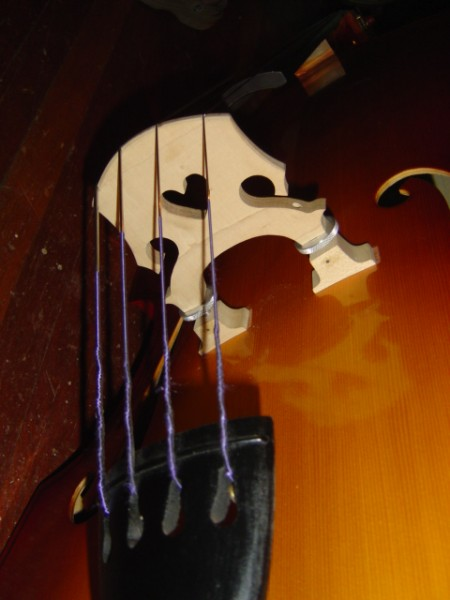close up photo of the bridge of an acoustic bass guitar