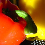 closeup photo of red and yellow bell peppers