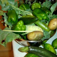 Bowl full of Peppers, pototoes, cucumbers, zucchini and kohlrabi
