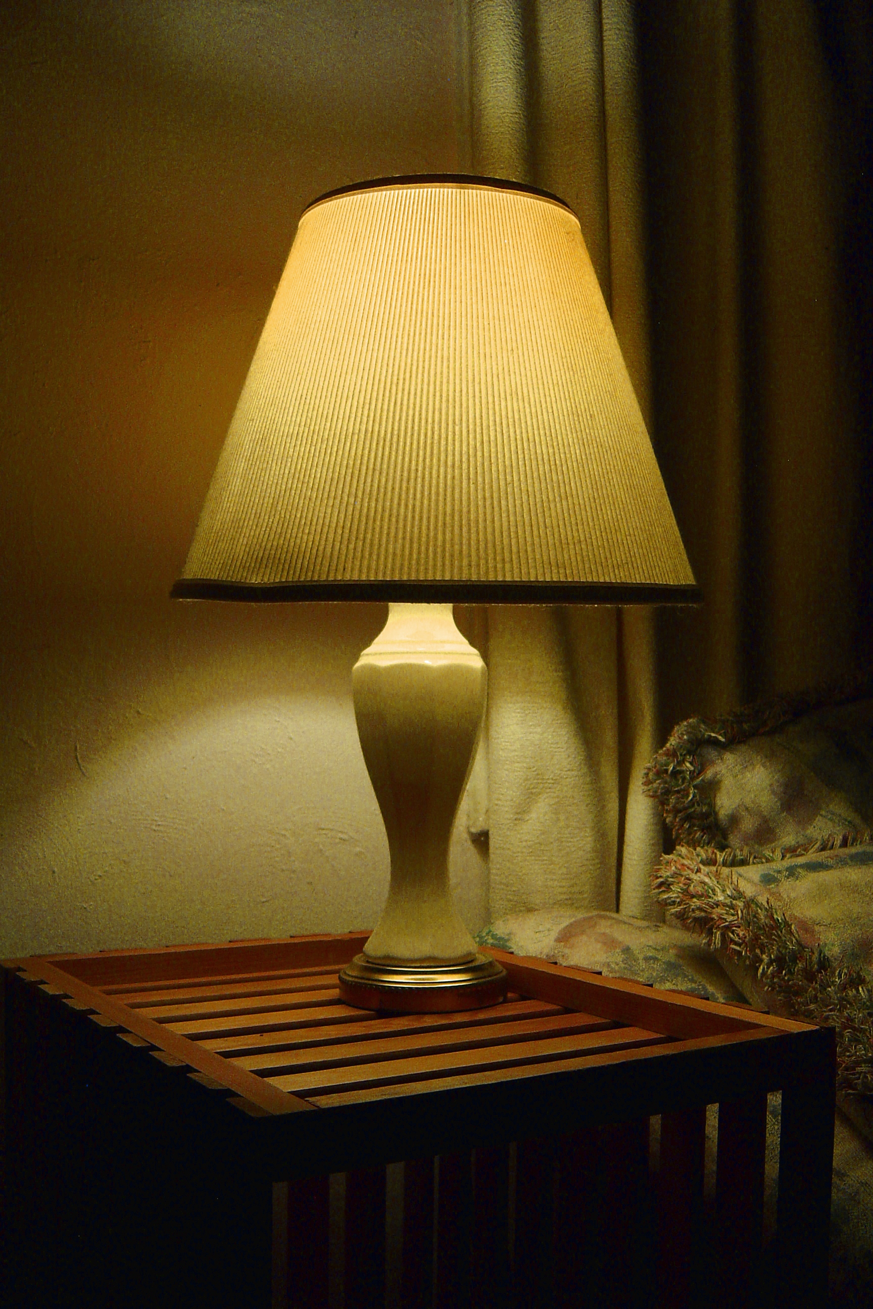 photo of living room lamp