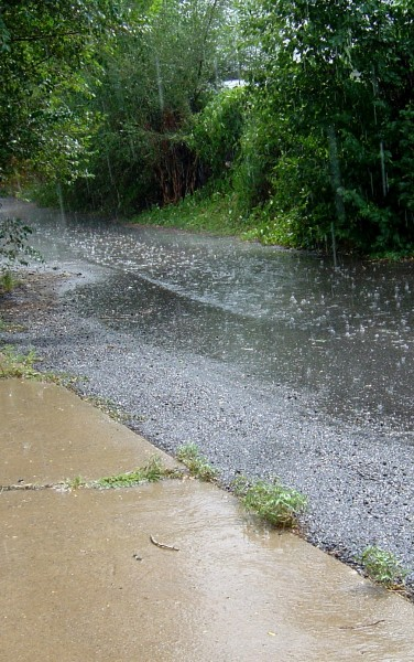 Photo of sunshine and raindrops falling on alley pavement during rain shower
