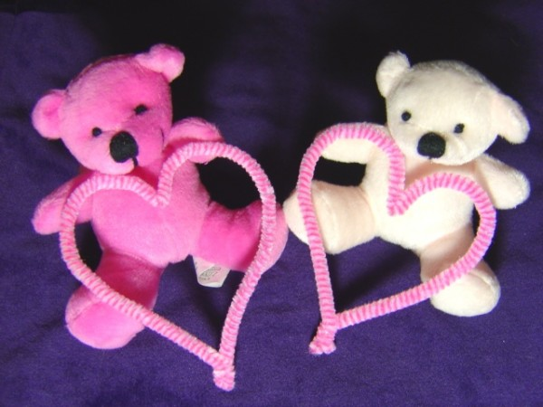 photo of two teddy bears, one pink the other white, both holding hearts