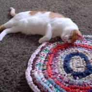 photo of a cute orange cat cuddling on a rag rug
