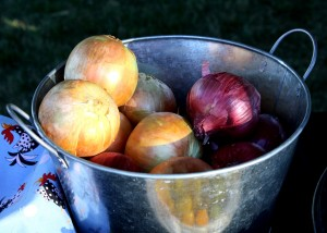 Free photo of a bucket full of onions