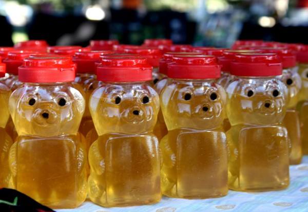 Free photo of honey in bear bottles