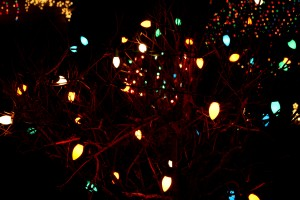 Christmas lights at night - free high resolution photo