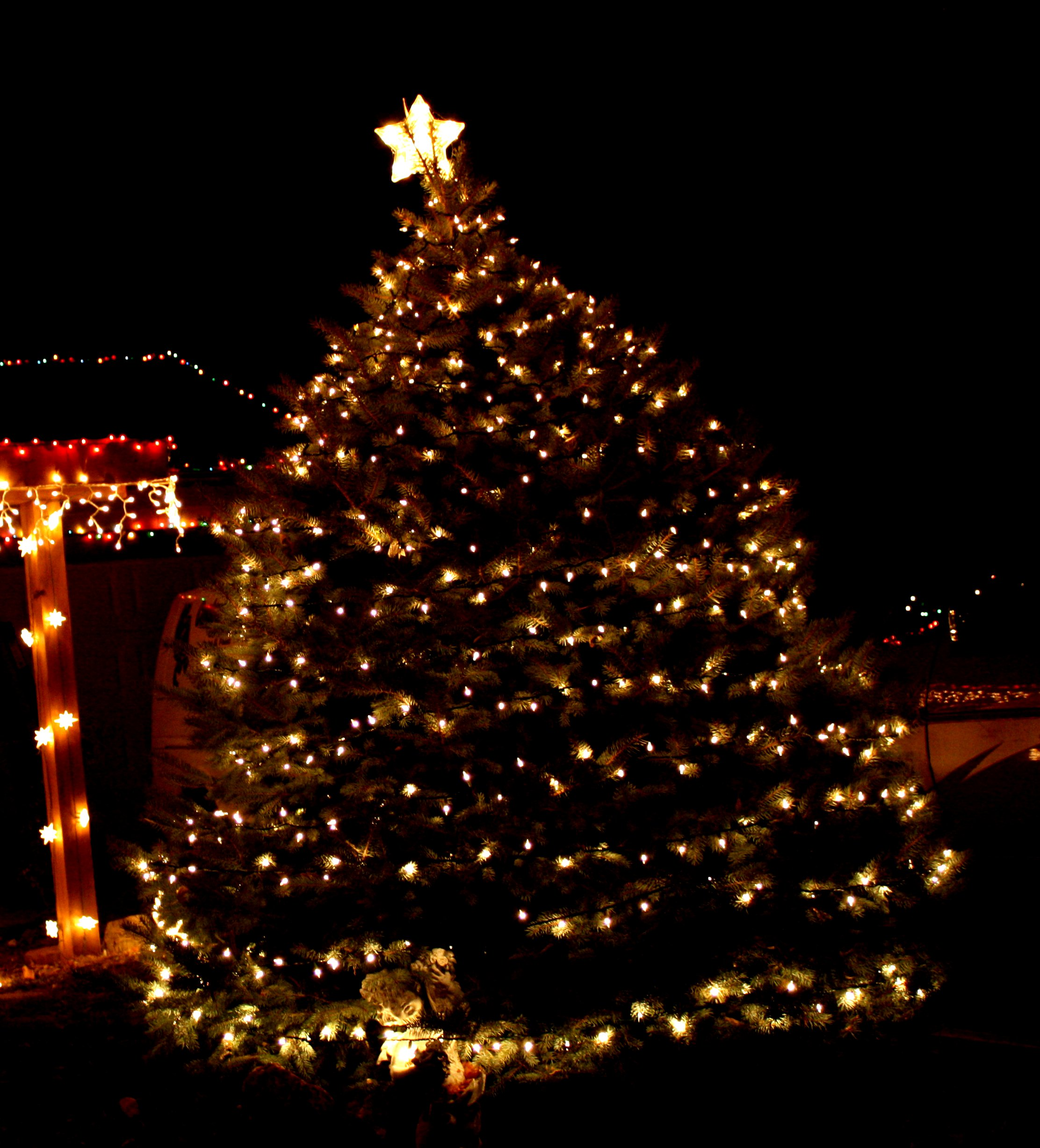 Large outdoor xmas tree lights outdoor designs tree with white lights picture free photograph photos workwithnaturefo
