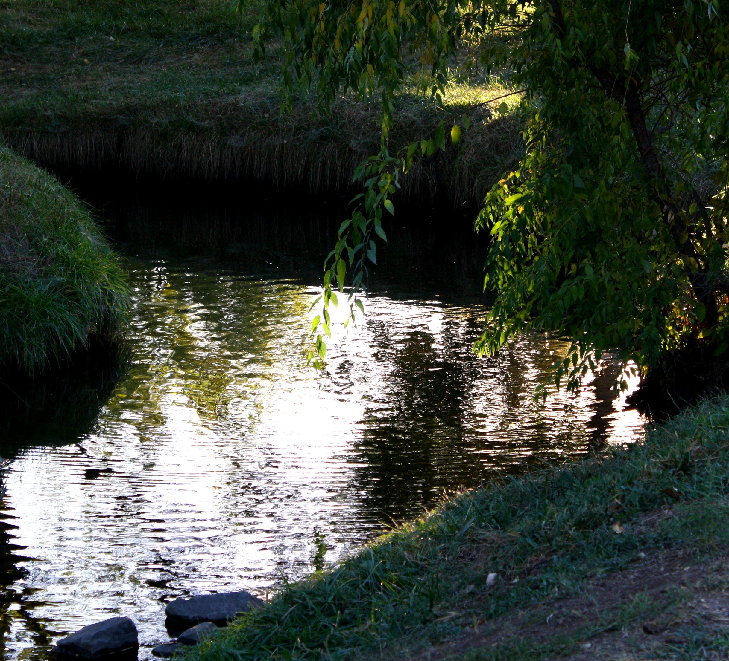 Free Creek