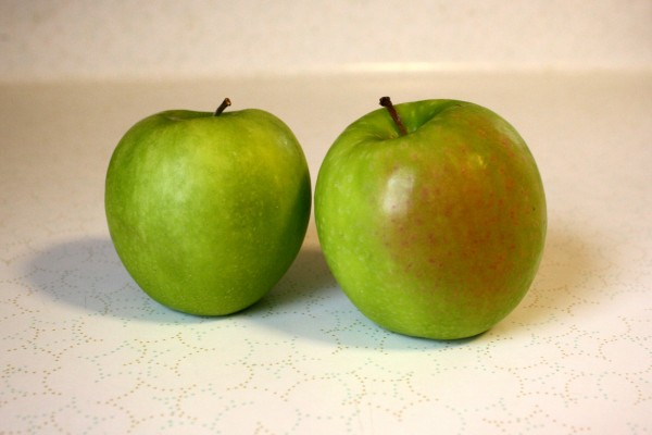 Granny Smith Apples - free high resolution photo