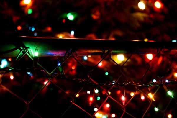 Christmas lights on chain link fence - free high resolution photo
