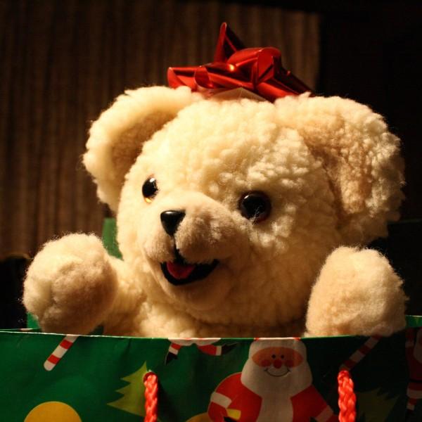 Christmas teddy bear - free high resolution photo