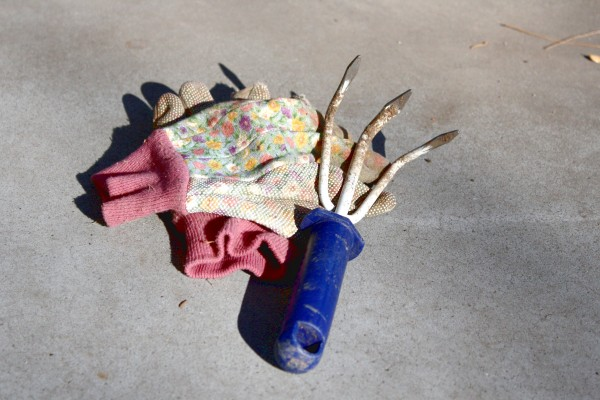 Garden Gloves and 3-prong Weeding Hoe - Free High Resolution Photo