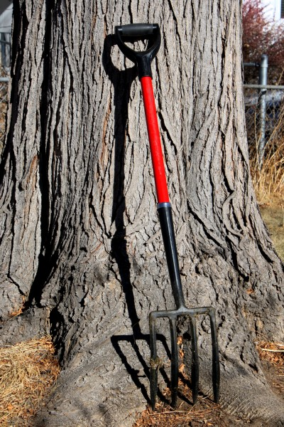 Pitchfork Leaning Against Tree - Free High Resolution Photo