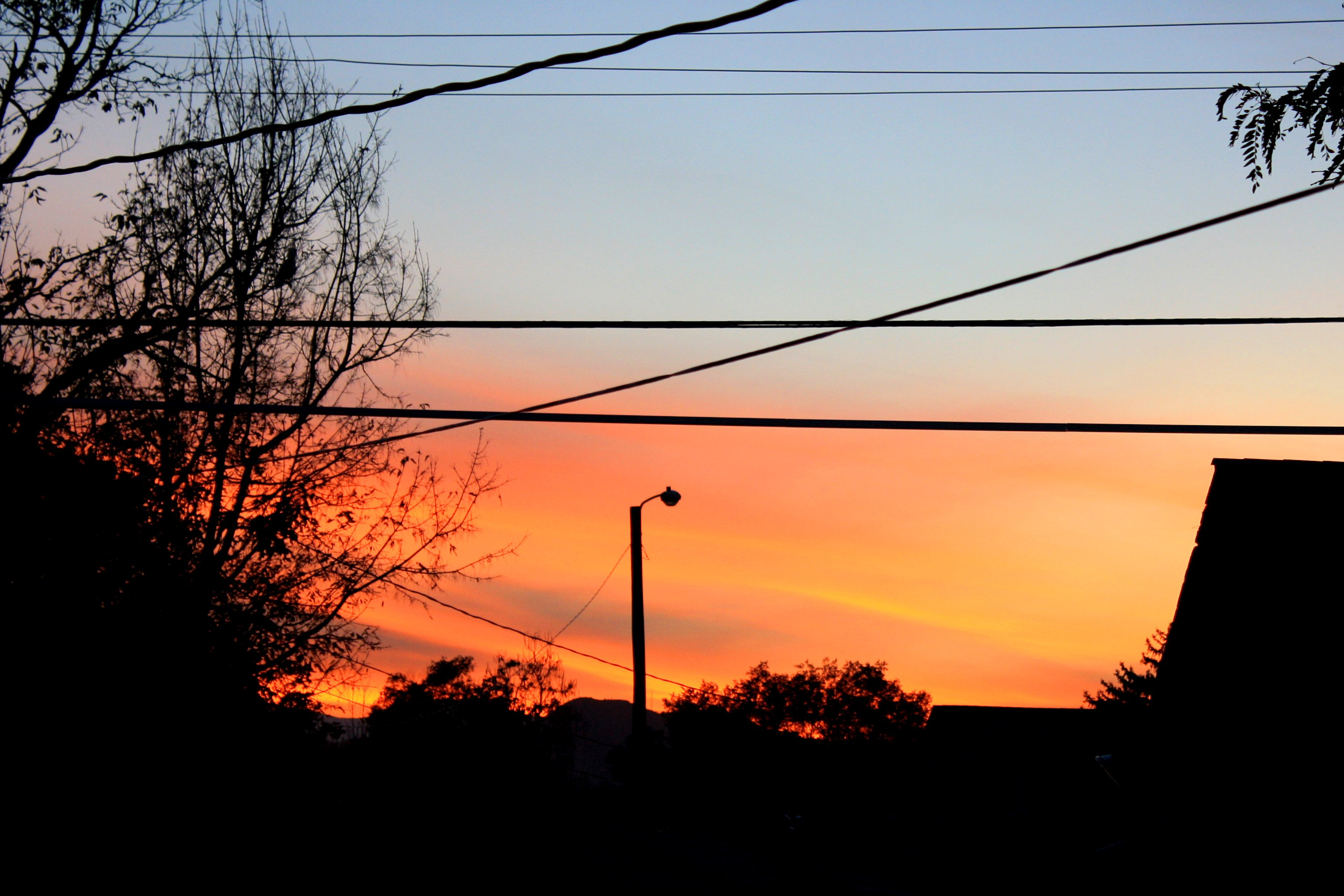 Sunset Seen Through Power Lines Picture | Free Photograph ...