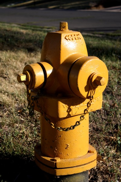 Yellow Fire Hydrant - Free High Resolution Photo