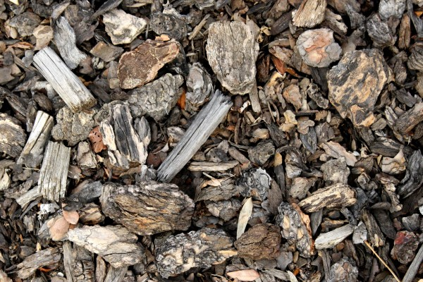 Bark Mulch Texture - Free High Resolution Photo