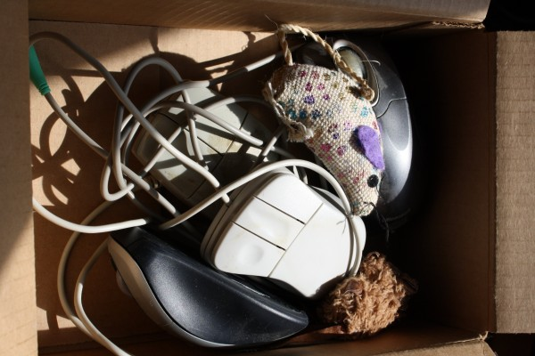 Box Full of computer and toy Mice - Free High Resolution Photo