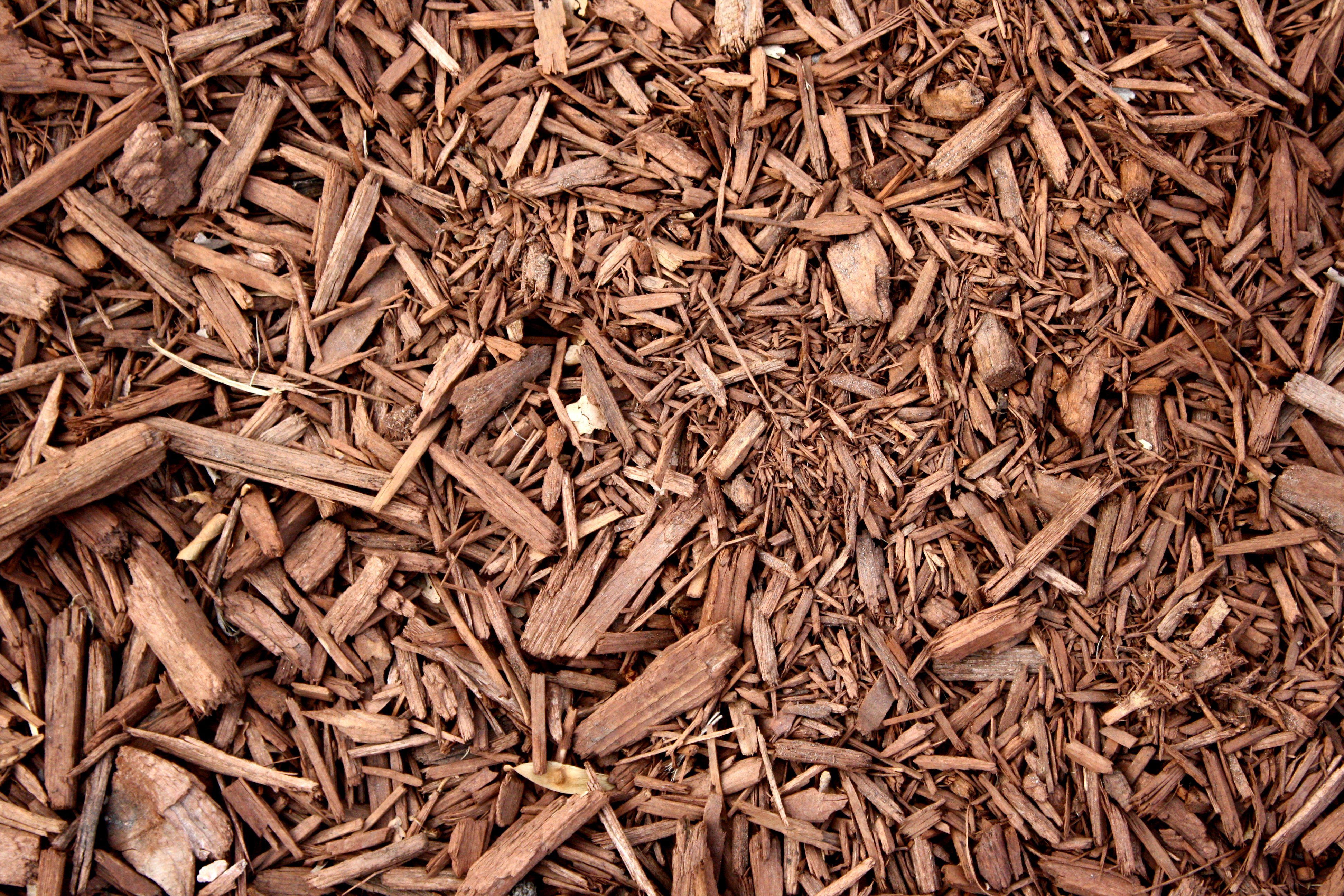Landscaping With Wood Mulch : Brown wood chip mulch texture picture free photograph