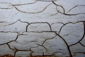 Cracked Paint - Free High Resolution Photo