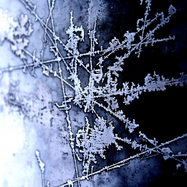 Ice on Glass Closeup - free high resolution photo