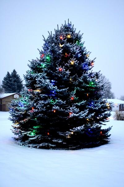christmas tree snow lights - photo #15