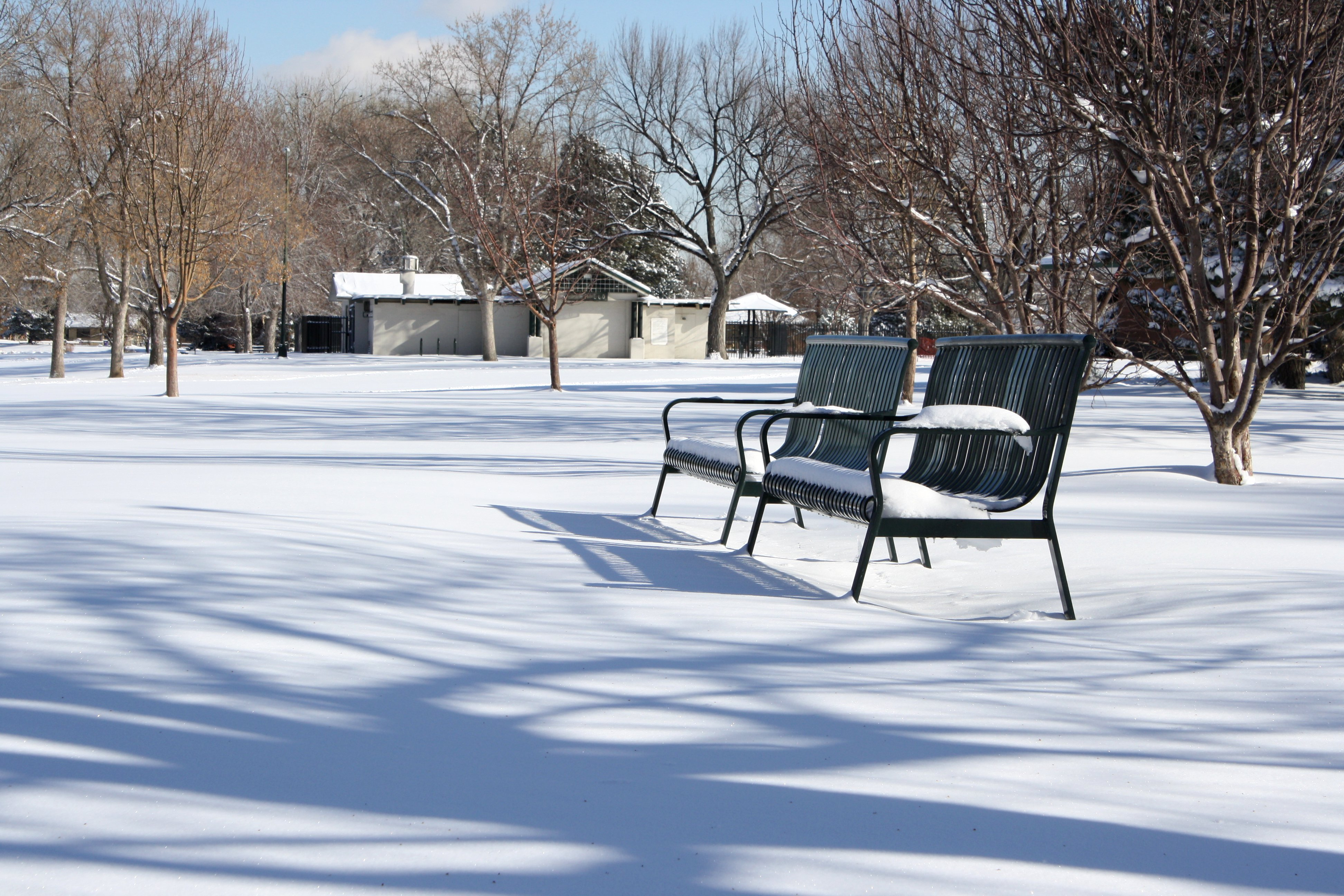 Park Benches In The Snow Picture Free Photograph