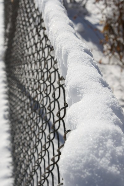 Snow on Chain Link Fence - Free High Resolution Photo