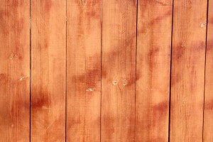 Stained Wooden Fence Boards Closeup Texture - Free High Resolution Photo