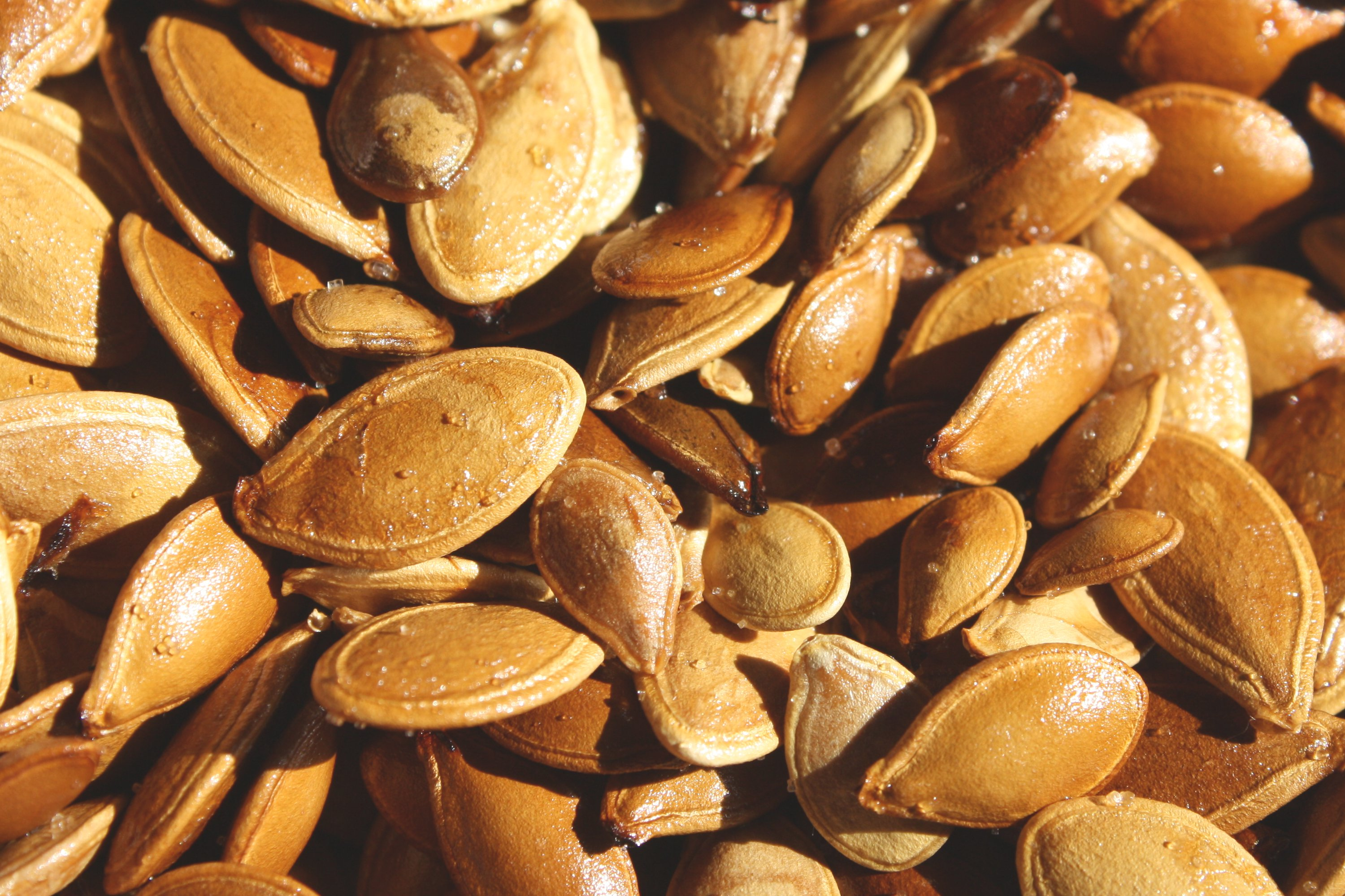 Toasted Pumpkin Seeds Texture Picture | Free Photograph | Photos ...