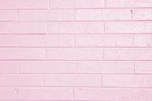 Pink Painted Brick Wall Texture - Free High Resolution Photo