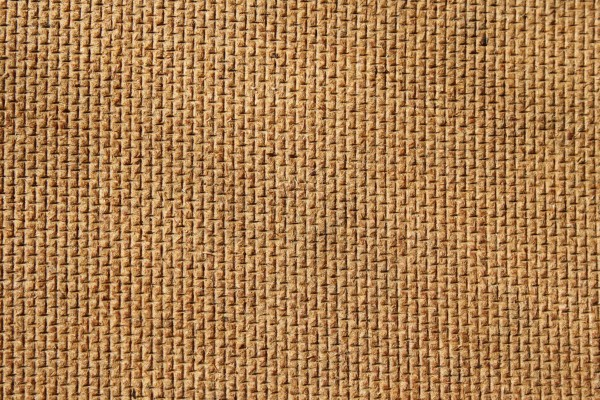 Textured Wallboard Back Close Up - Free High Resolution Texture Photo