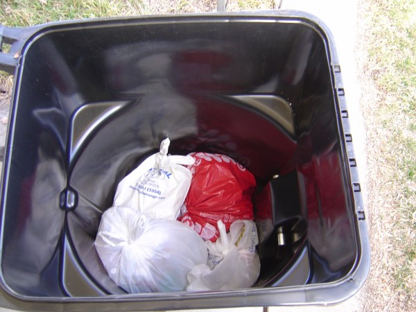 Trash in Open Garbage Can - Free High Resolution Photo