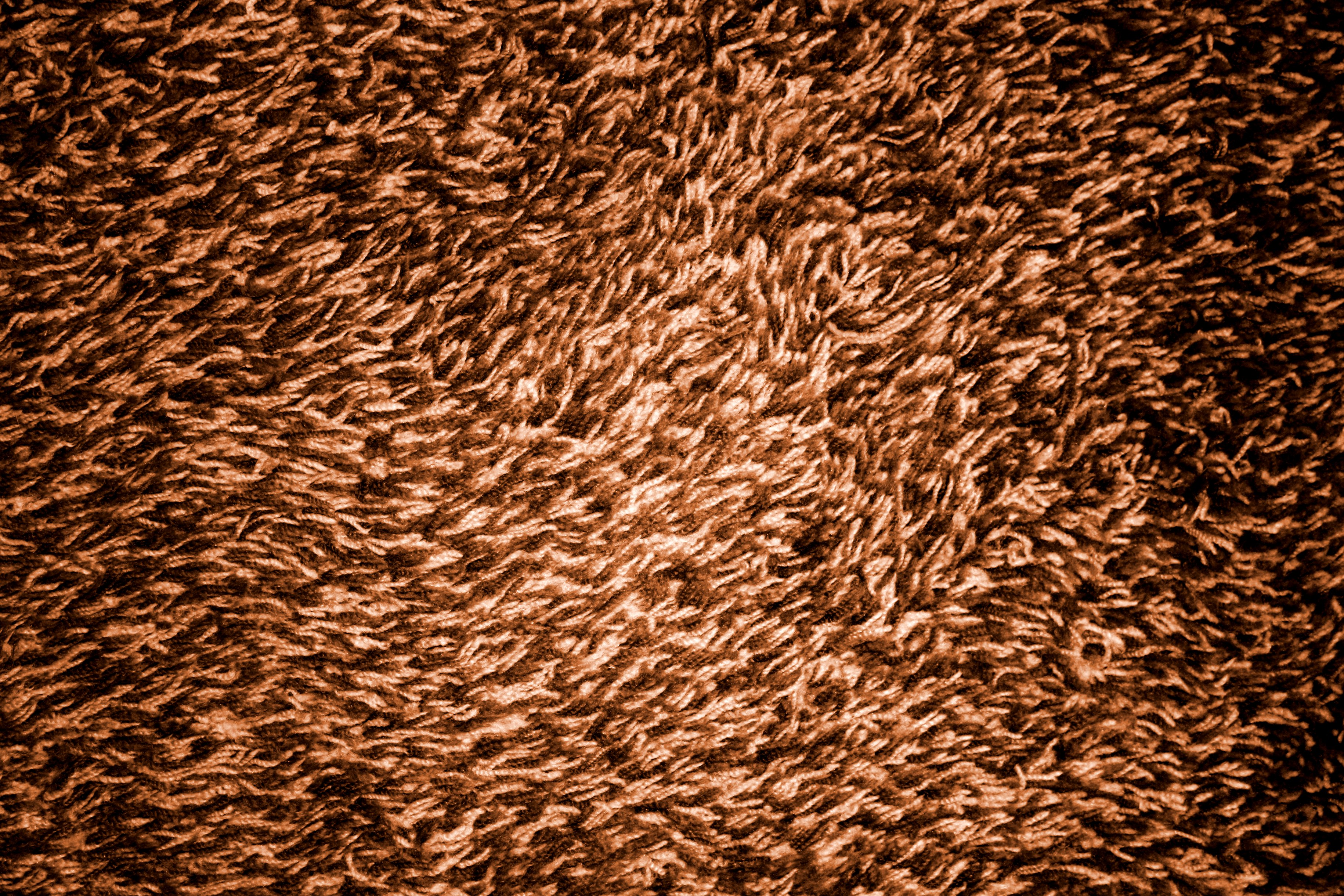 Brown Shag Carpeting Texture Picture Free Photograph