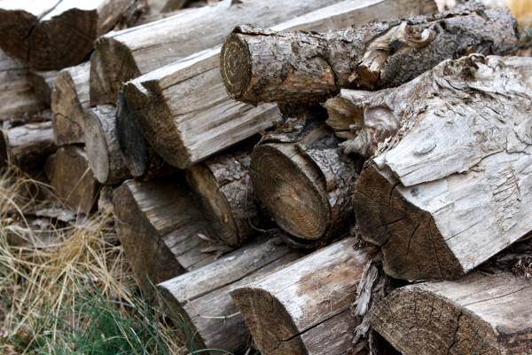 Pile of Firewood - Free High Resolution Photo