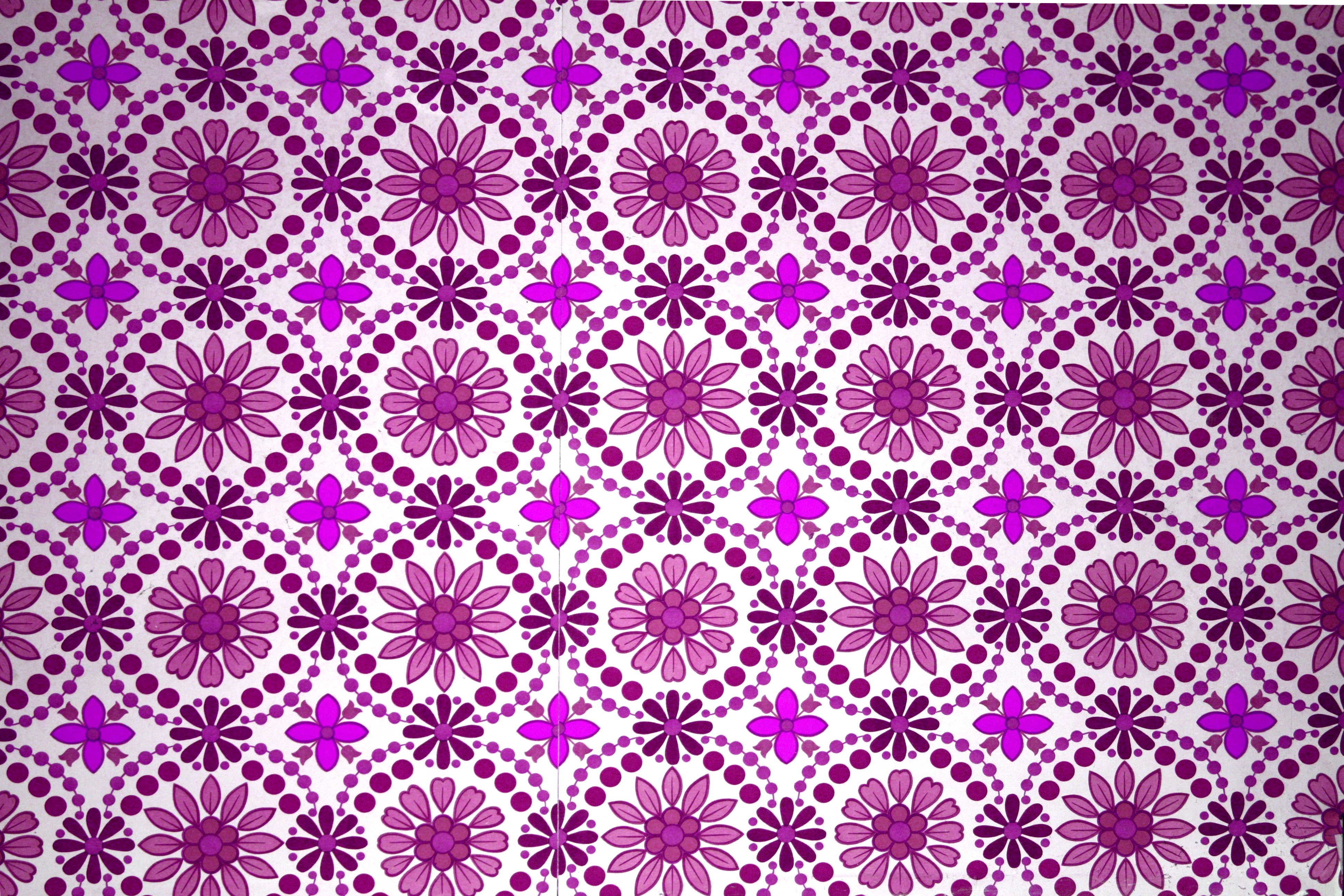 Magenta Flowers Wallpaper Texture Picture Free