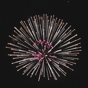 Fireworks White and Pink Starburst - Free High Resolution Photo