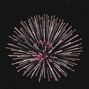 Fireworks White and Pink Starburst - Free High Resolution Photo