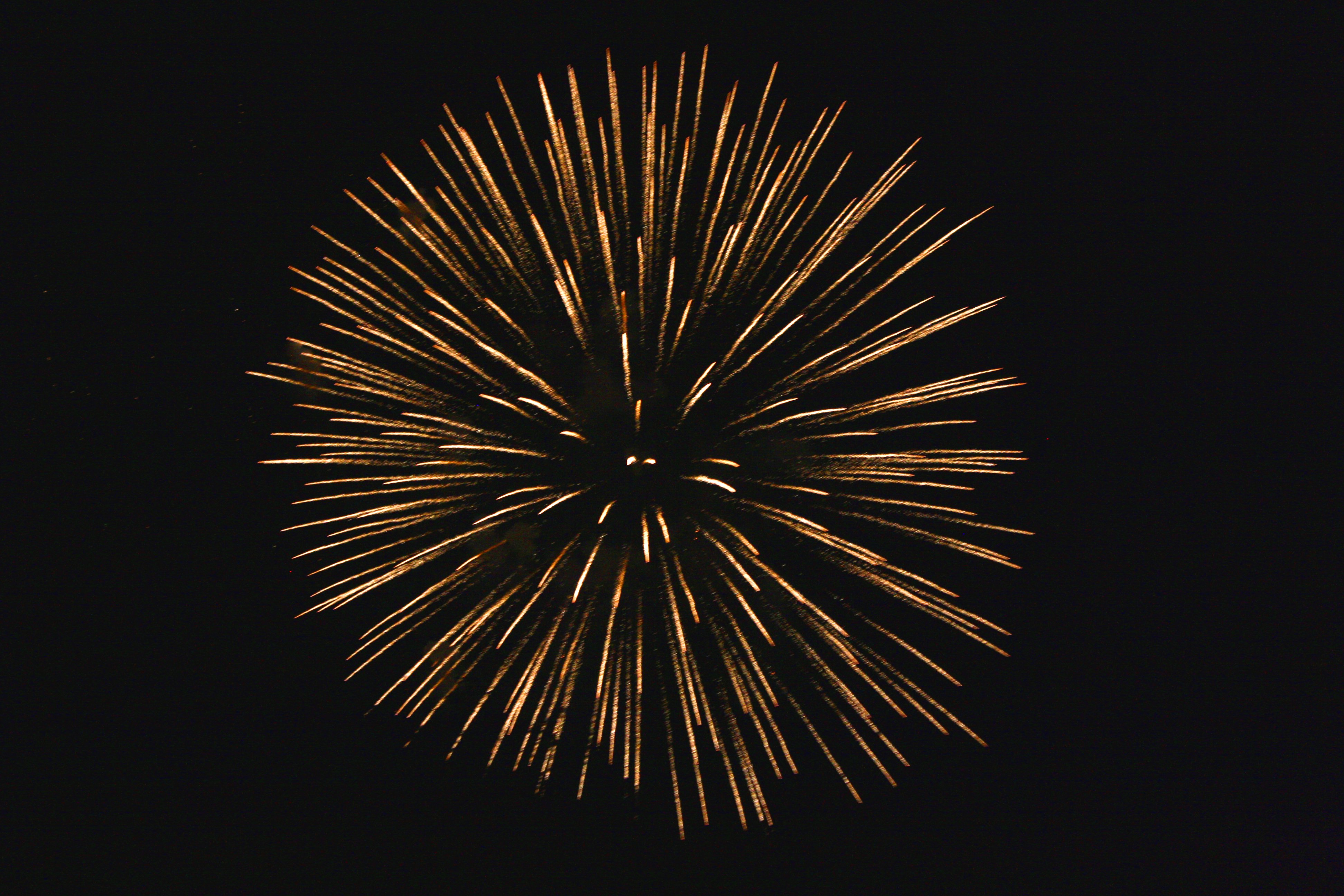 golden starburst fireworks picture free photograph photos public