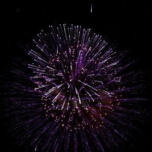Purple Fireworks Starburst - Free High Resolution Photo