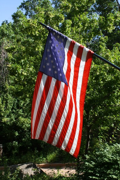 American Flag with Foliage in the Background - Free High Resolution Photo
