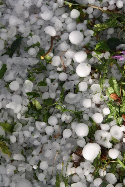 Large Hailstones on Ground - Free High Resolution Photo