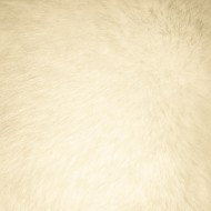 Beige Fur Texture - Free High Resolution Photo
