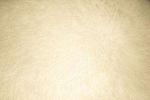 Beige Fur Texture - Free High Resolution Photo
