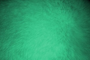 Green Fur Texture - Free High Resolution Photo