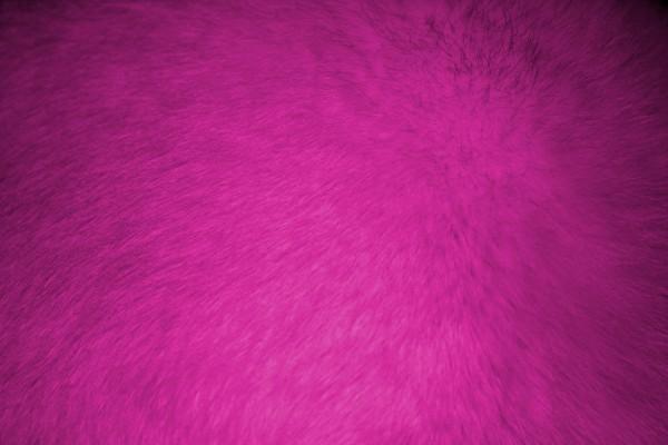 Hot Pink Fur Texture - Free High Resolution Photo