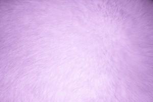 Lavender Fur Texture - Free High Resolution Photo