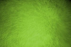 Lime Green Fur Texture - Free High Resolution Photo