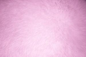 Pink Fur Texture - Free High Resolution Photo