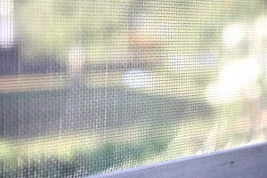 Window Screen - Free High Resolution Photo